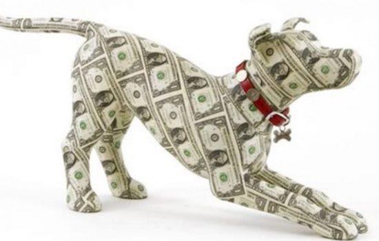 OLTRE 2 MILIARDI DI EURO SPESI IN ITALIA PER IL CIBO DEGLI ANIMALI